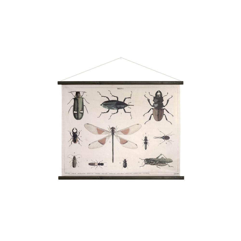 Planche entomologique, toile de coton imprimée, déco vintage HK Living