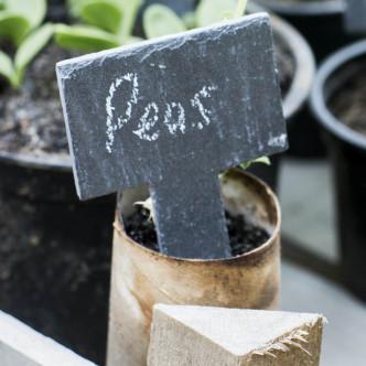 Etiquettes ardoise pour plantations et jardinage